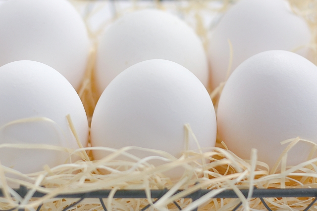 卵 イメージ