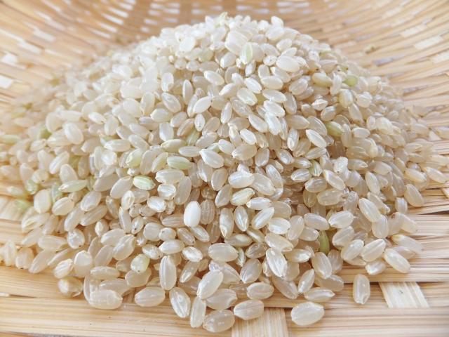 玄米 イメージ
