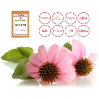 国産エキナセア茶